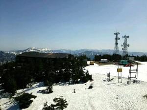 春 横手山