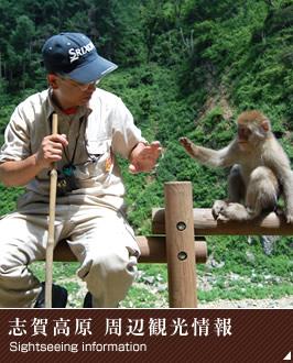 志賀高原周辺観光情報
